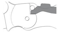 COMPRESSION LOCK Mechanizm blokujący, który wykorzystuje sprężynę podobną do liścia, aby klinować bocznie między rampą na trzpieniu ostrza i kołkiem oporowym (lub sworzniem kowadełka). Opracowany i opatentowany przez Spyderco, zapewnia ekstremalną wytrzymałość zamka i łatwość użycia.
