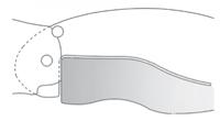 CHRIS REEVE INTEGRAL LOCK (R.I.L.) Opracowany przez producenta noży Chris Reeve, R.I.L. jest podobny do Walker LinerLock, ale wykorzystuje pręt blokujący, który jest integralny z jedną z skal uchwytów.